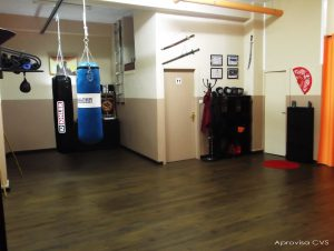 Sala boxeo kick savate